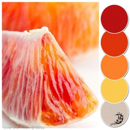 colour palette citrus tang