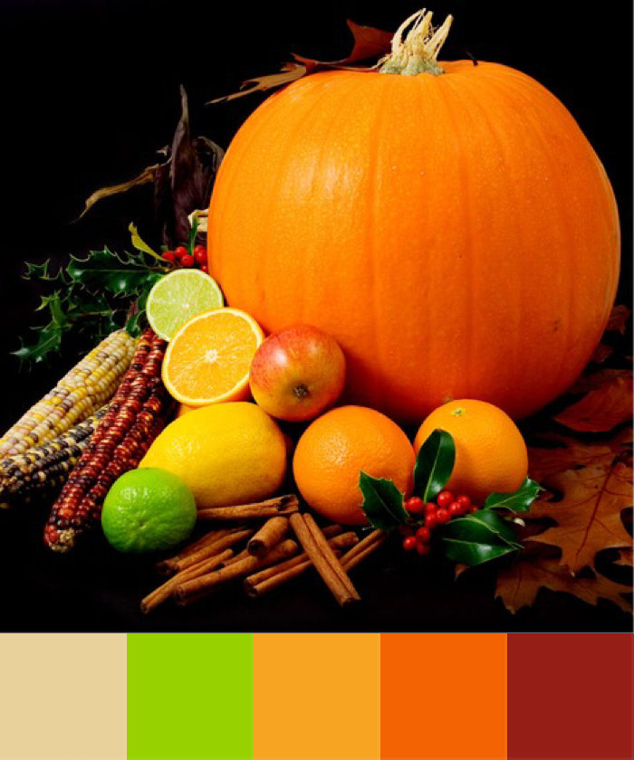 Over the Moon | Crafted Colour - Pumpkin and Citrus Palette